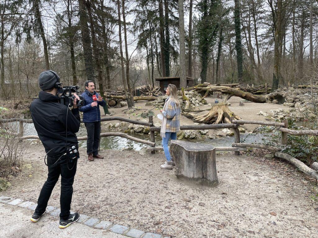 Outdoor Livestream Zoo München