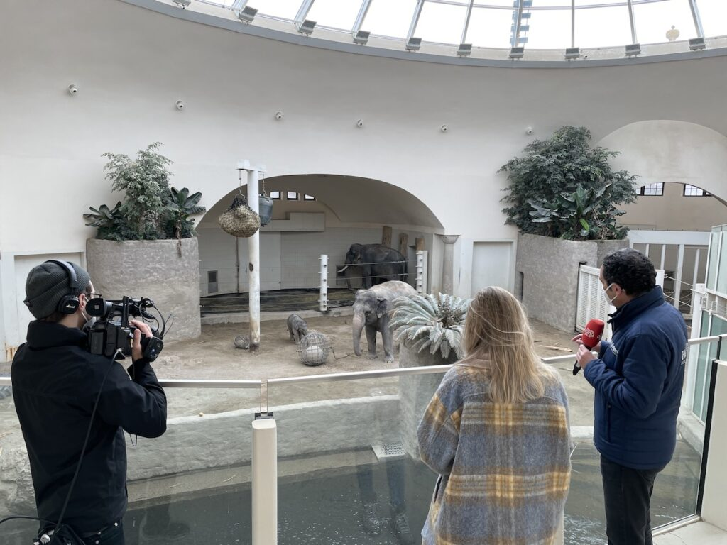 Outdoor Livestream Zoo
